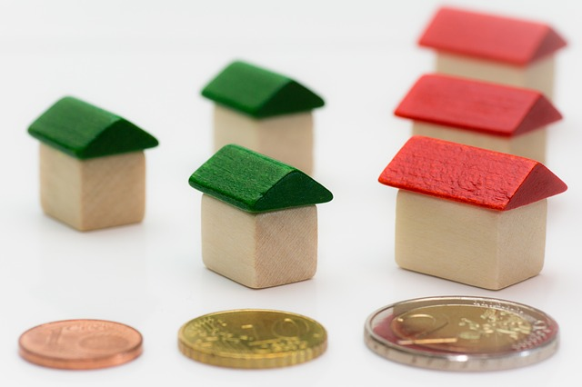 mince a domky