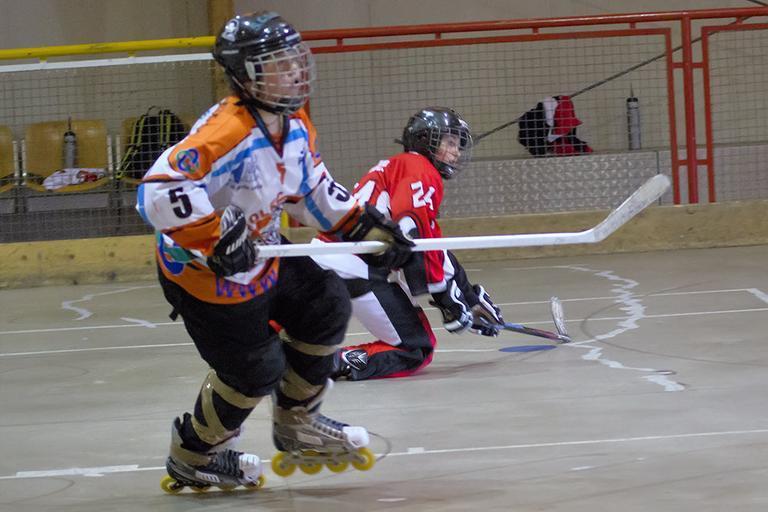 Hráči skater hokeje